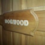 dogwood_01